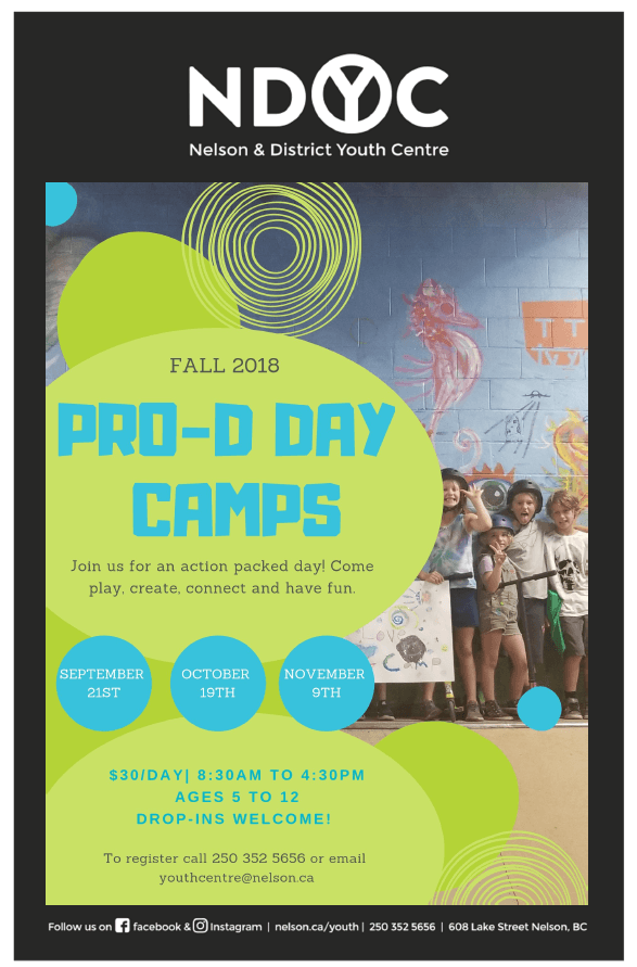 Pro-d day camp-all poster